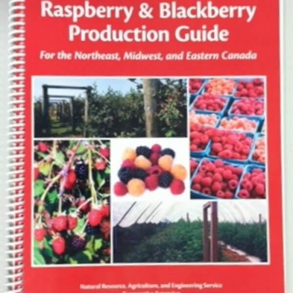 Raspberry & Blackberry Production Guide - Book