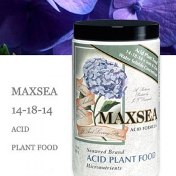 Maxsea 14-18-14 Acid Plant Food