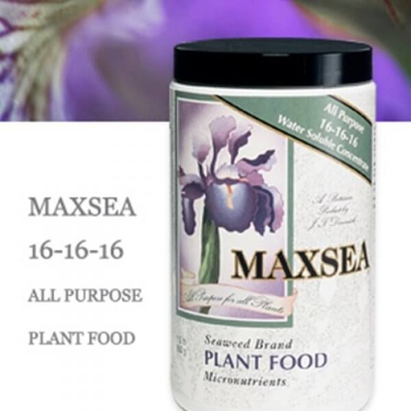 Maxsea 16-16-16 All Purpose Plant Food