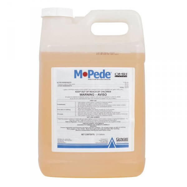 M-Pede (insecticidal soap)