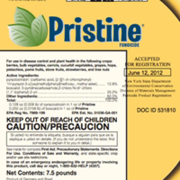 Pristine Fungicide (pyraclostrobin + boscalid)